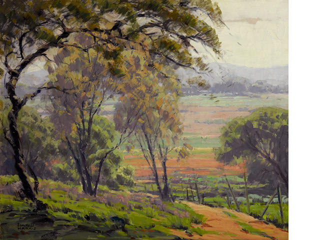 Sam Hyde Harris (American, 1889-1977) A stand of trees with hills in the distance 20 1/4 x 24 1/4in
