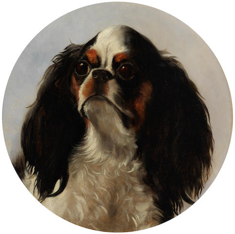 Follower of George Earl (British, 1824-1908) Portrait of a King Charles Spaniel 12.5 x 12 in. (32 x 30.5 cm.)