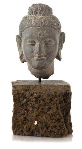 Small Gandaran Schist, Head of Buddha, 2nd/3rd Century