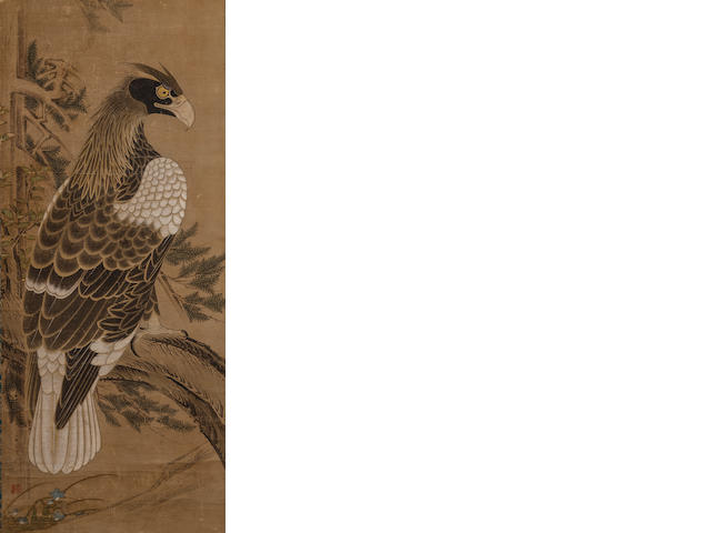 Anonymous (17th/18th century)<BR /> Hawk in a Tree