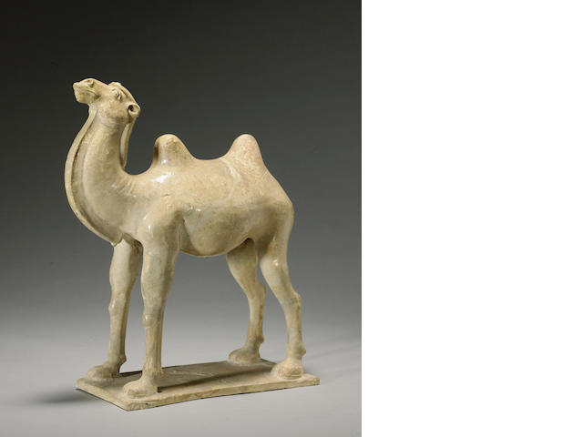 A straw glazed pottery camel Tang dynasty