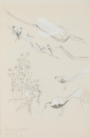 Cecil Beaton, Birds in the Tangier Garden of the Hon. David Herbert, Inscribed 'the top lines would be/eluminated CB' (lower left) Pencil and wash on paper h x w: 17 ¼ x 11 ¼ in. sight