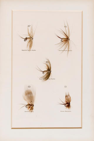 ANGLING. HALFORD, FREDERIC M. Dry Fly Entomology. A Brief Description of Leading Types of Natural Insects Serving as Food for Trout & Grayling with the 100 Best Patterns of Floating Flies. London: Vinton, 1897.