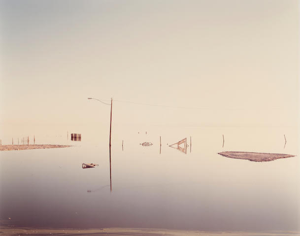 Richard Misrach (born 1949); Flooded Lamppost, Salton Sea, from Desert Cantos series;