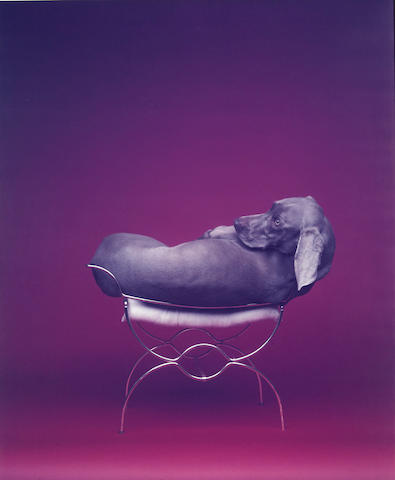 William Wegman (American, born 1943); Seated Burner;