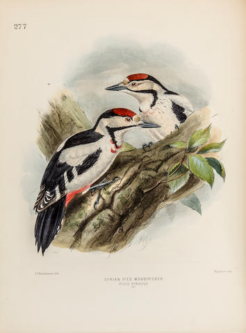 DRESSER, HENRY EELES. 1838-1915. A History of the Birds of Europe. London: by the Author, 1871-1881.<BR />