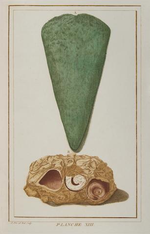BURTIN, FRANCOIS XAVIER DE. 1743-1818. Oryctographie de Bruxelles ou Description des Fossiles. [Brussels]: the Author, 1784.