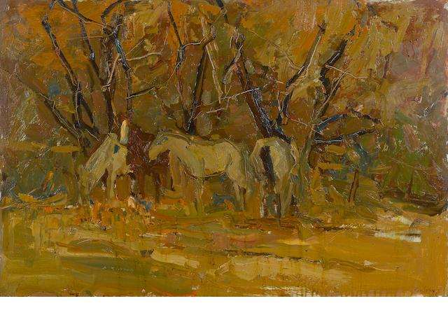 S.C. Yuan, horses
