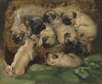 Henriette Ronner-Knip (Dutch, 1821-1909) A litter of pugs 15 3/4 x 19 3/4in (40 x 50.2cm)