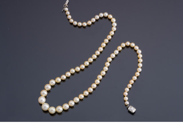 A natural pearl and diamond necklace, Theodore B. Starr,