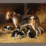 John Emms (British, 1843-1912) A Foxhound bitch feeding her pups 14 x 16in. (35.5 x 41cm.)