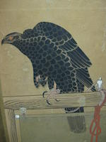 Anonymous (18/19th Century)<BR />Falcons