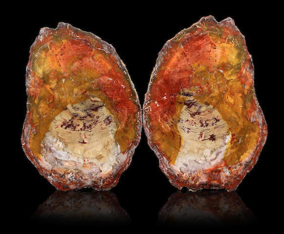 Pair of book-matched petrified wood slabs
