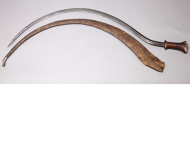 An Abyssinian shotel