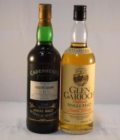 Glen Garioch 8 year old (1)   Glencadam 1980- 11 year old (1)