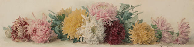 Paul de Longpre (American, 1855-1911) Chrysanthemums 11 x 37in