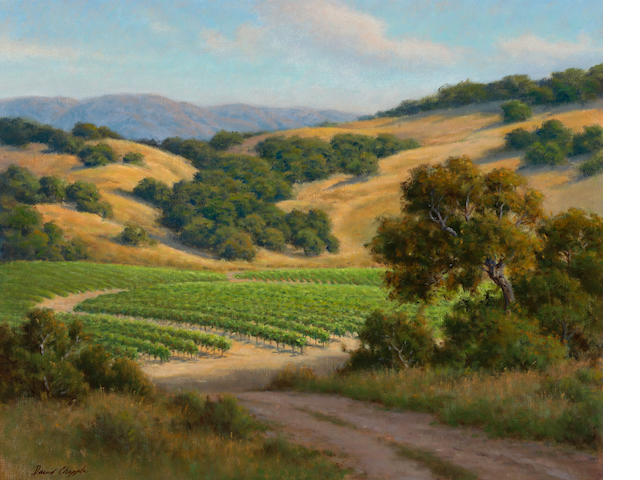 David Chapple, Valley Vinyard, oil on linen, 24 x 30in