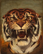 Vincent Kennard; Unknown Artist Lion, 1895; Tiger (2) 23 1/2 x 18in; 20 1/2 x 15 1/4in