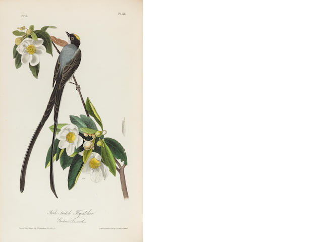AUDUBON, JOHN JAMES. 1785-1851.  The Birds of America, from drawings made in the United States and their territories. New York & Philadelphia: Audubon and J.B.Chevalier, [1839]-1840-1844.<BR />
