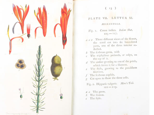 BOTANY. MARTYN, THOMAS. Thrity-Eight Plates, with Explanations; Intended to Illustrate Linnaeus's System of Vegetables.... London: B. White and Son, 1788.