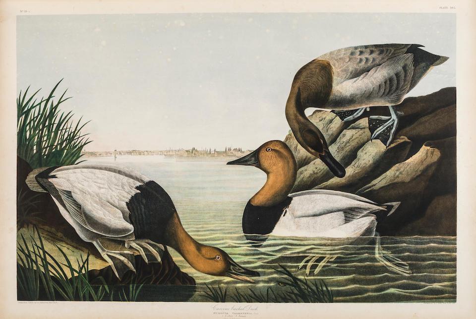 AUDUBON, JOHN JAMES. 1785-1851. The Birds of America, from Original Drawings by John James Audubon.... New York: Roe Lockwood & Son, [1858-]1860.