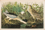 AUDUBON, JOHN JAMES. 1785-1851. The Birds of America, from Original Drawings by John James Audubon....  New York: Roe Lockwood & Son, [1858-]1860.<BR />