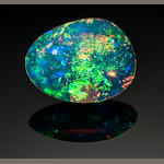 Gem Opalized Clamshell