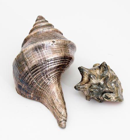 A group of two various silver deposit decorated sea shells