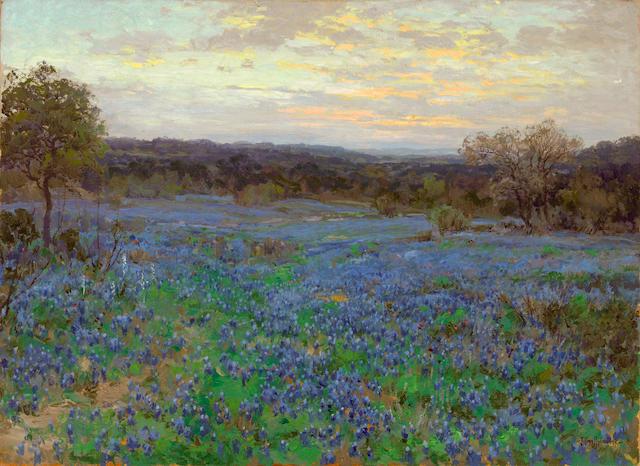 Julian Onderdonk (1882-1922) Field of bluebonnets at sunset, 1919-1920 30 x 40in