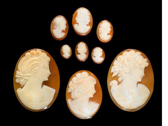 Group of Shell Cameos