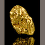 Very Large Gold Nugget