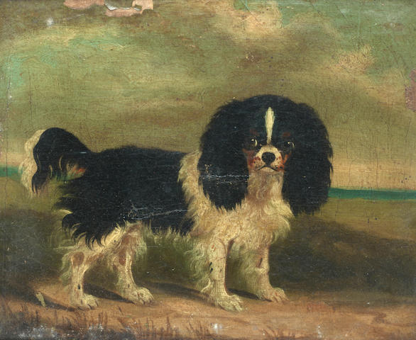 English School, 19th century King Charles Spaniels, a pair each 7 3/4 x 10 in. (19.5 x 25.5 cm.)