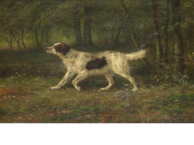 Willem Carel Nakken (Dutch, 1835-1926) A Setter in the field  8.5 x 13.5 in. (21.5 x 34.5 cm.)