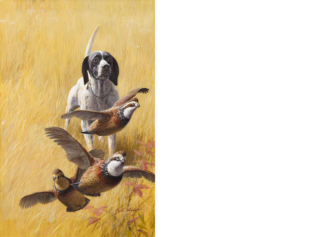 John Walter Scott (American, 1907-1987) Pointer and partridges 21 x 14 in. (53.2 x 35.5 cm.)