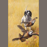 John Walter Scott, Pointer and partridges, signed, gouache and watercolor on paper, 21 ½ x 14in