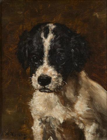 John Martin Tracy (American, 1843-1893) A Spaniel puppy 7 3/8 x 5 1/2 in. (18.2 x 13.9 cm.)