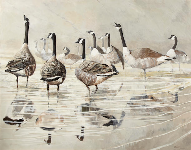 Ken Turner (British, 20th Century), Geese in shallow water, signed, oil on board, 48 x 60in