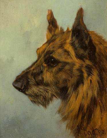 Arthur Batt (British, 1846-1911) Scottish Terrier head study 8 x 6 1/2 in. (20.3 x 16.5 cm.)