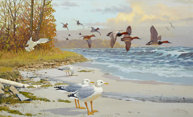 Lee Leblanc (1913-1983) Birds along the coast, signed, oil on board, 26 x 42in