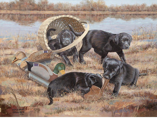 Bill Gillies (American, 1911-2000) Black Labrador puppies at play with decoys 18 x 24 in. (45.7 x 60.9 cm.)