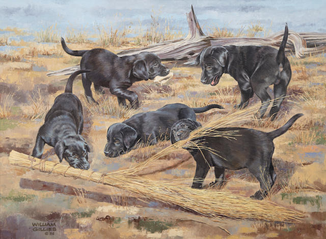 Bill Gillies (American, 1911-2000) Black Labrador puppies playing 18 x 24 in. (45.7 x 60.9 cm.)