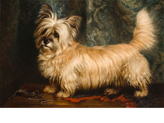 Nellie Hadden (British, ?-died circa 1917) Portrait of a Skye Terrier 24 x 36 in. (61 x 91.4 cm.)