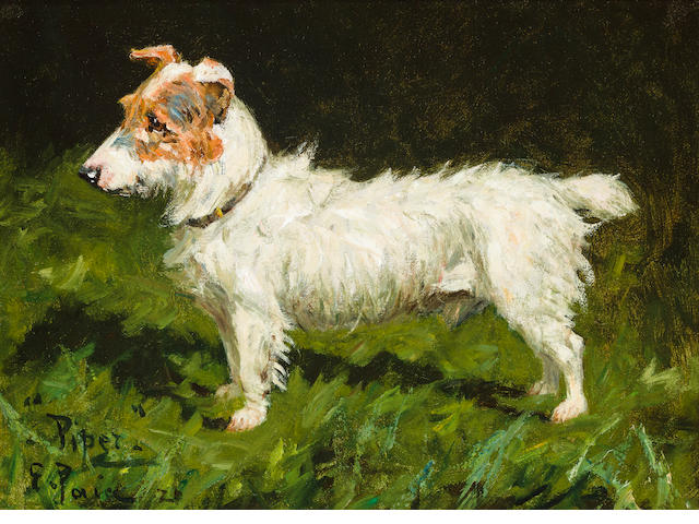 George Paice (British, 1854-1925) Portrait of Piper, a Jack Russell Terrier 9 x 12 in. (22.8 x 30.4 cm.)