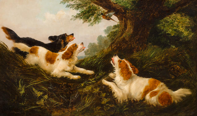 John Mearns (British) Spaniels flushing game  30 1/8 x 49 3/4 in. (76.5 x 126.4 cm.)