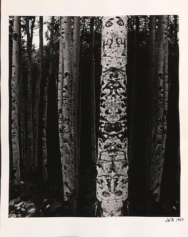 Jerry Weismann, (5) photographs;