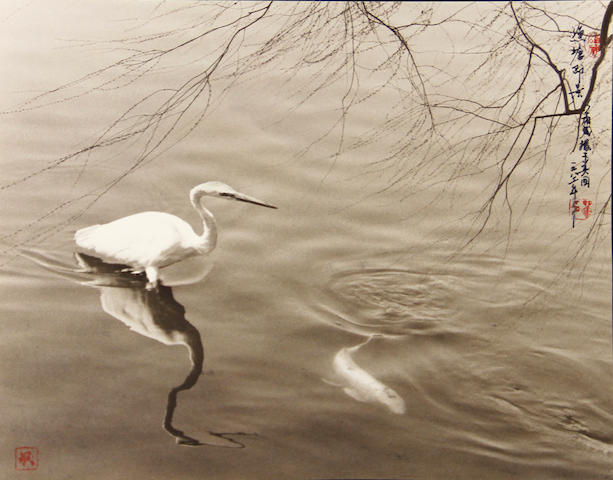 Don Hong-Oai (Chinese, 1929-2004); Pond, China;