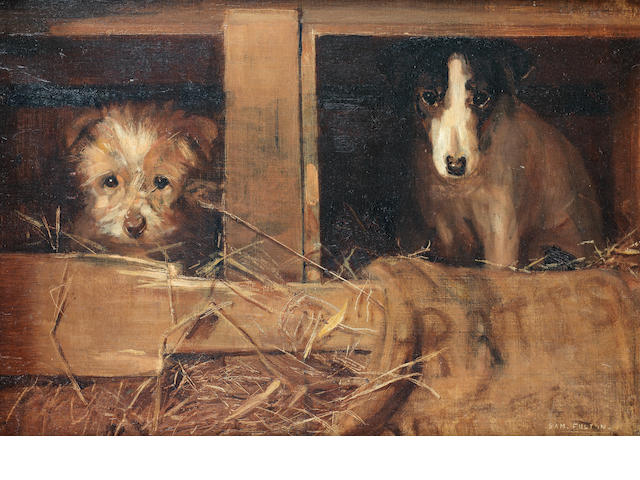 Samuel Fulton (British, 1855-1941) Kennel companions 14 x 20 in. (35.5 x 51 cm.)