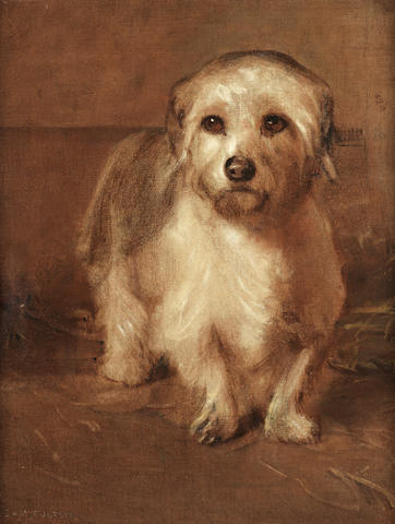 Samuel Fulton (British, 1855-1941) A white Terrier (puzzled) 18 x 14 in. (46 x 35.5 cm.)