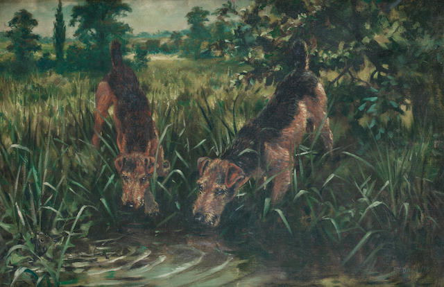 Frederick Thomas Daws (British, 1878-1956) Airedales on the scent 20 x 30 in. (50.5 x 76 cm.)