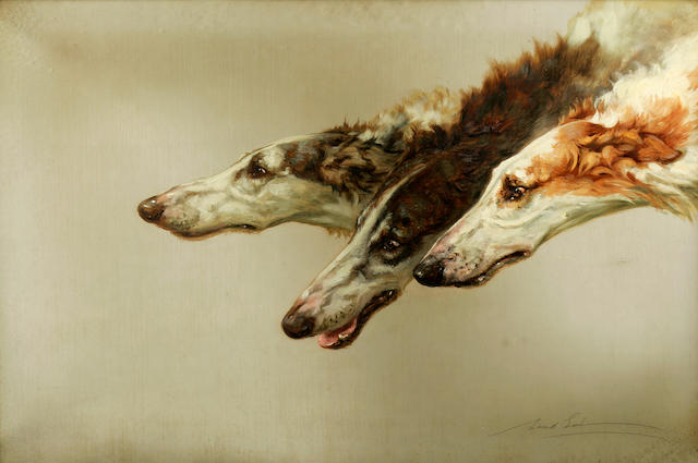 Maud Earl (British, 1863-1943) Borzoi heads 24 x 36 in. (61 x 91.4 cm.)
